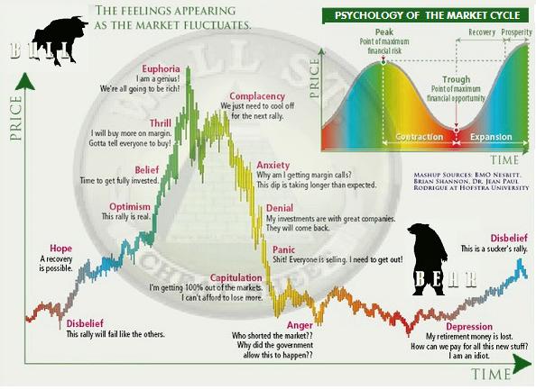 Bull bear trading strategy